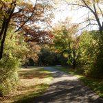 River Falls park walk (2013